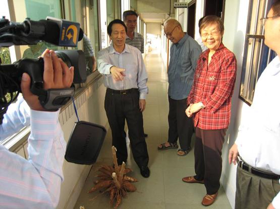 2007.11.17自治区人大副主任徐爱俐到我所考察木薯产业化项目情况